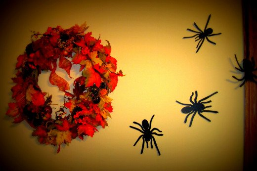 Martha Stewart's spider's climb the wall.