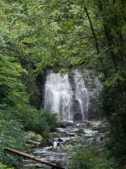 A nice waterfall between the park entrance on the road to Cades Cove in Great Smoky Mountain National Park