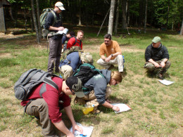 Working with map and compass