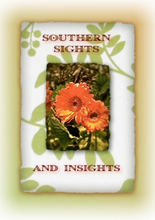 Seasons of the South: Accenting a Heritage