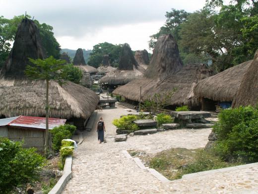 ancestral village of Tarung - west Sumba