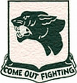 WW2: Shoulder sleeve patch of the United States 761st Tank Battalion.