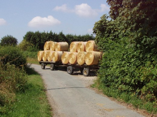 Staw Bales - taking the harvest home