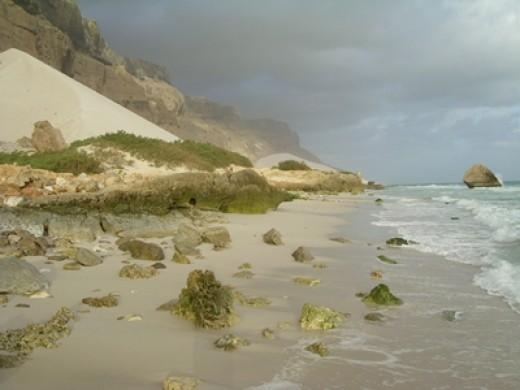 The socotra beach