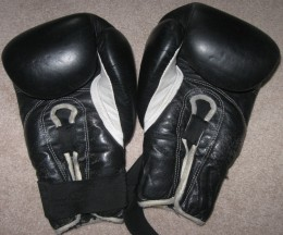 My kickboxing gloves