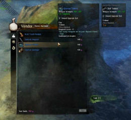 In Guild Wars 2, there is nothing like that warm fuzzy feeling when the hero helps someone in need. Also the karma so obtained can be used to get better equipment.