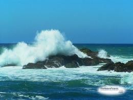 The torrent of the waves breeds life below.