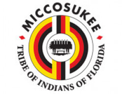Ode to the Miccosukee Tribe - Lee Tiger - Sharing Your World