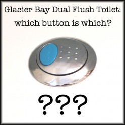 Glacier Bay Dual Flush Toilet Blue Button; What's it For? Which Button is Which?
