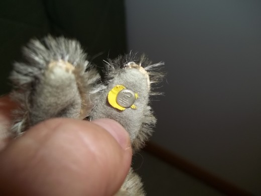 Old button in ear - Note silver tone with raised lettering.