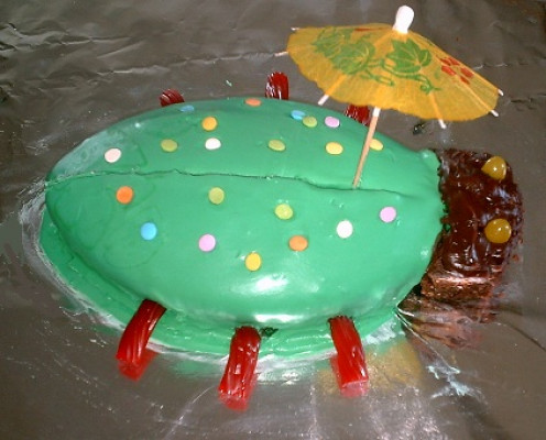 Buggy Birthday Cake The Umbrella was my 9 year old's idea. The perfect finishing touch!