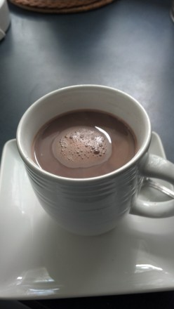 Life's Guilty Pleasures: Homemade Hot Chocolate