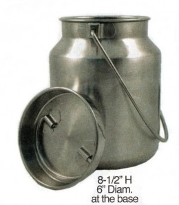 One Gallon Stainless Steel Milk Jug