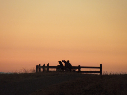People Sitting on A Bench and Watching Sunset in Montgomery Hill Park San Jose CA