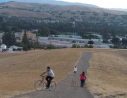 A Person Biking in Montgomery Hill Park San Jose CA