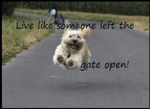 Live Like Someone Left The Door Open