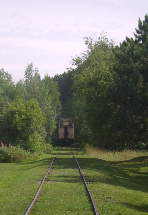 Looking south from camp five, the train disappears into the forest