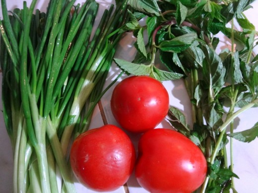 Start with fresh vegetables (green onion, tomato, mint)
