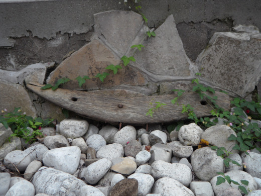 A piece of a wooden ship with nail holes and nails in it, resting up against rock in Ellen's garden.