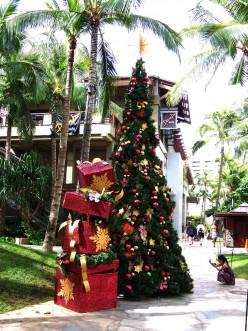Green Christmas in Waikiki, Hawaii.