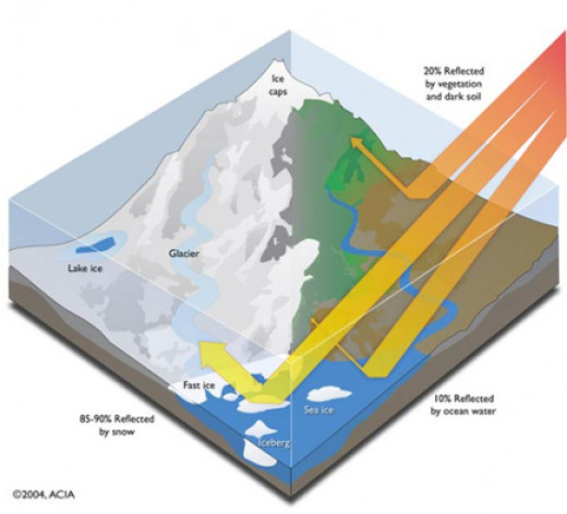 The importance of polar ice with regards to reflection of the sun's rays and heat.