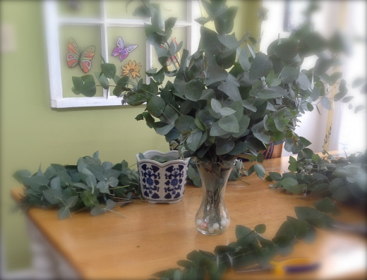 The strong eucalyptus fragrance started getting pretty heady!