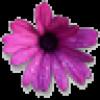 KNH profile image