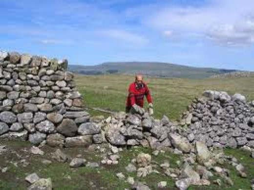 Dry stone wall repairs on Malham Moor