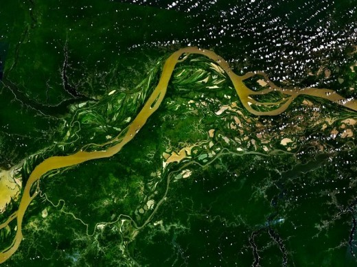 The Amazon river flowing through the Amazon rainforest.