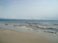 the sea shore