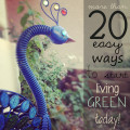 Living Green - over 20 Tips for a Happy and Healthy House and Planet