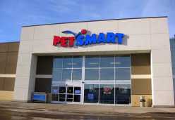 What are the Best Pet Stores in the U.S.?  Comparison of PetSmart and Petco