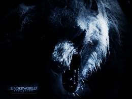 Werewolf from Underworld Revolution