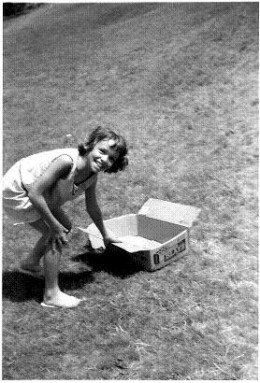 When we were kids, one of my uncles took us to Fort Meigs in Perrysurgh, Ohio to slide down the big hill with nothing but boxes.  It was a blast.