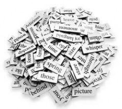 What is the most overused word in your vocabulary?