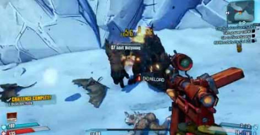 Borderlands 2 Finding Corporal Reiss passes through more bullymongs.