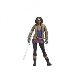 Michonne Comic Series 1
