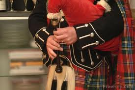 The silky hair of the white haggis is used to cover the sporran