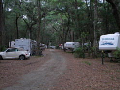 Best RV Snowbird Camping Destinations : Jekyll Island Campground