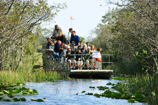 This is the image most people hold of touring the Everglades - on an air boat.  You also have other options such as kayaking!