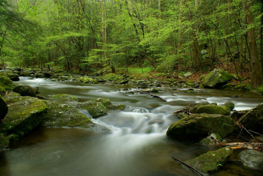 God's Spirit in a Moving Mountain Stream