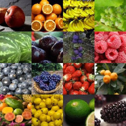 Many different fruits which will benefit your overall health