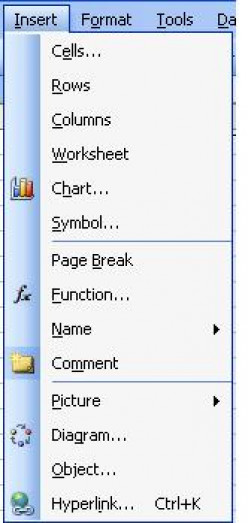 Working with the Insert Menu of Microsoft Office Excel 2003