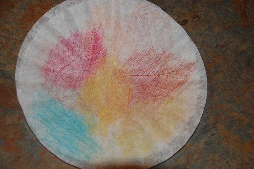 leaf rubbings on both sides of coffee filter
