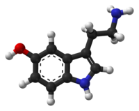 Serotonin - Courtesy of Wikipedia