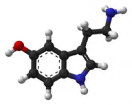 Serotonin - Courtesy of Wikipedia