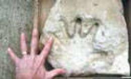 Ancient Hand Pring