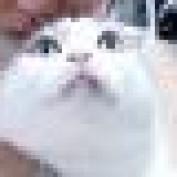 datingconversion profile image