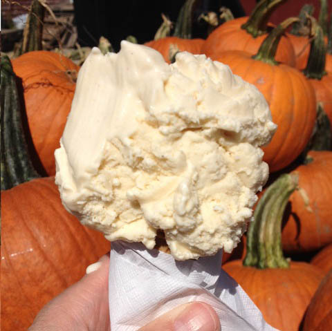 Local farms generally sell homemade items such as pie and breads and, of course, ice cream. At this time of year, there's nothing much better than pumpkin ice cream.