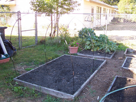 Note the tent poles that are the frame for the greenhouse